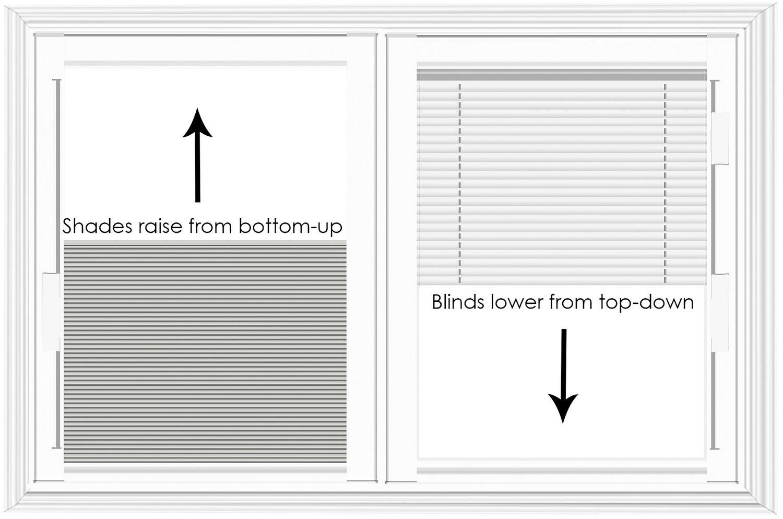 Blind-Shade Comparison copy - Copy
