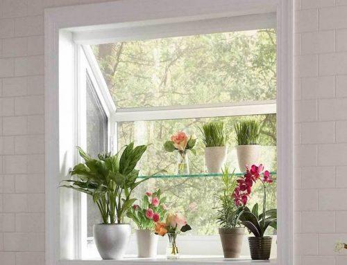 7 Kitchen Garden Window Ideas